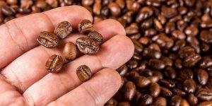 4 ควรรู้ เก็บเมล็ดกาแฟอย่างไรให้อร่อยนาน